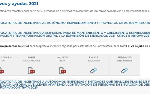 Plan de Incentivos y Subvenciones del IMDEEC 2021